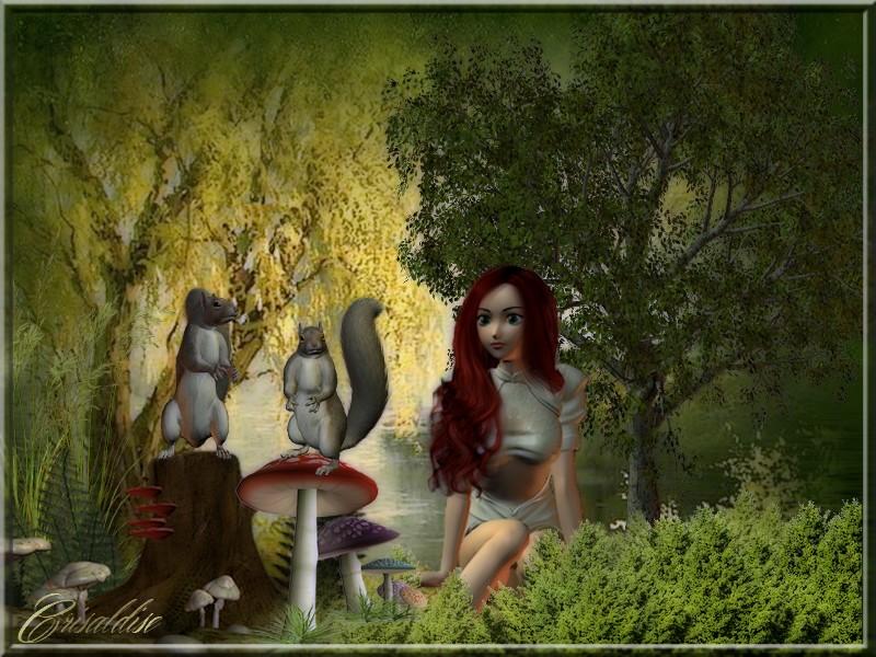 Dans le bois1