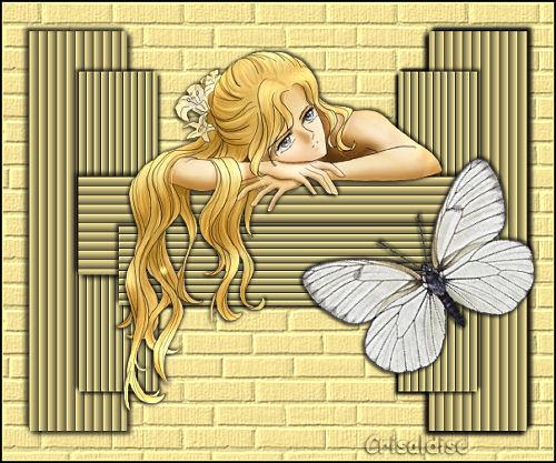 le rêve d'un fille1