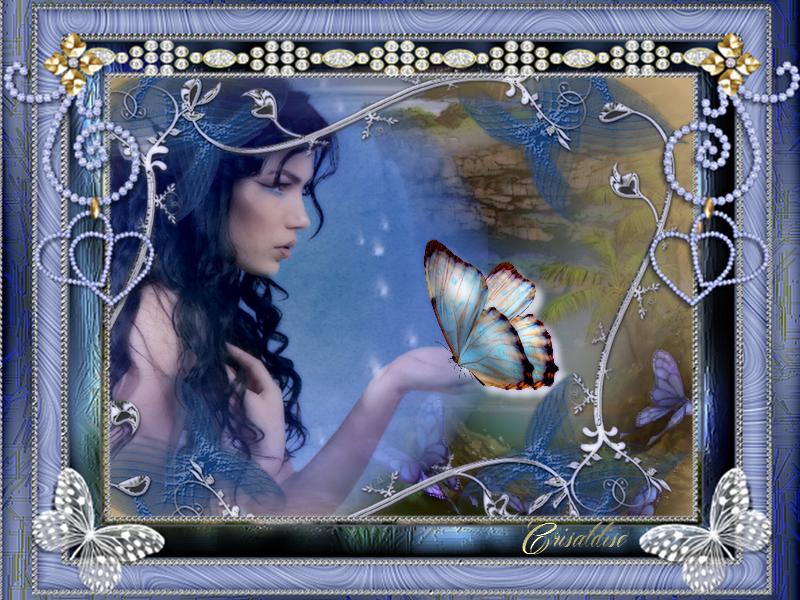 papillon cadre