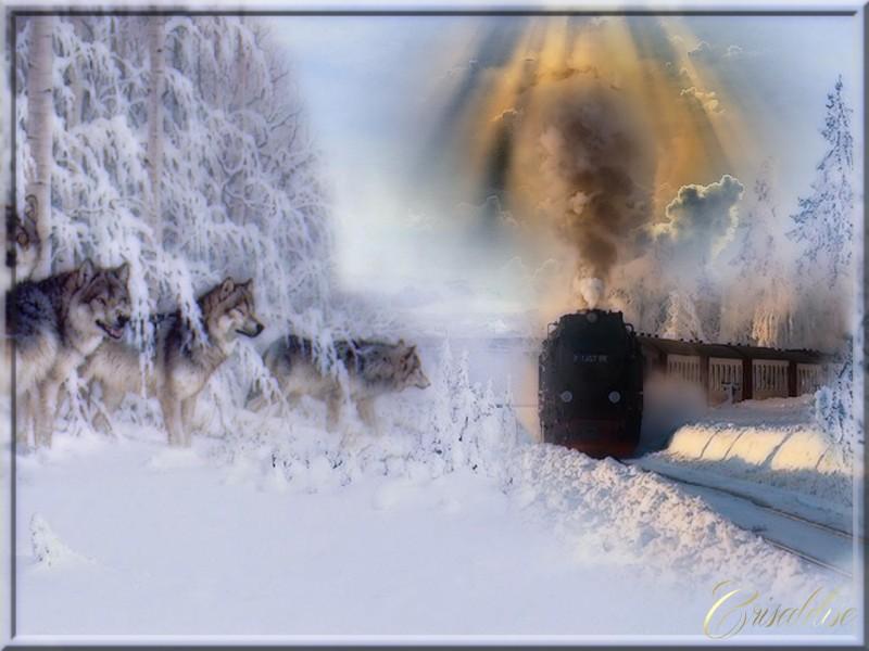 train-36ddd45